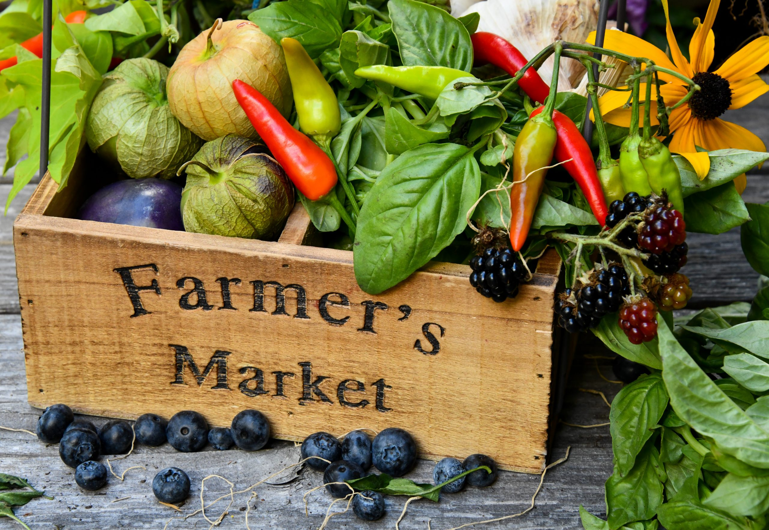 Find Spring Produce and Gourmet Goods at the Columbia Heights Farmers Market